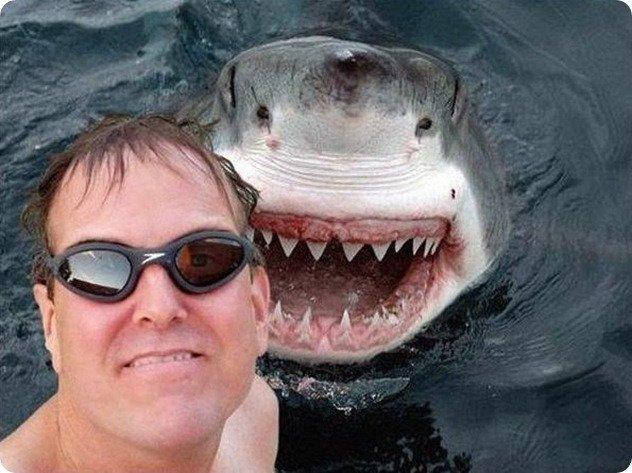 #selfieapezzi