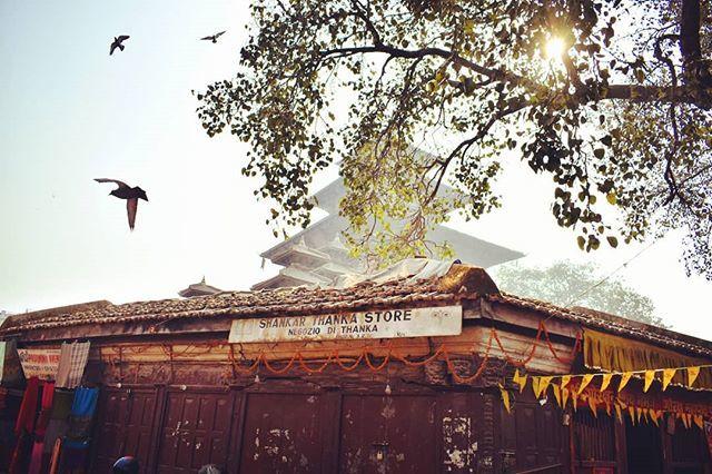 City of Temples#kathmandu #kathmandunepal #nepal #kantipur #nepaltemple #temple #newars #world_heritage_site #Pashupati #swayambhunath #Cadmendu #compositionphotography #streetphotography # https://ift.tt/2ZdQtMj