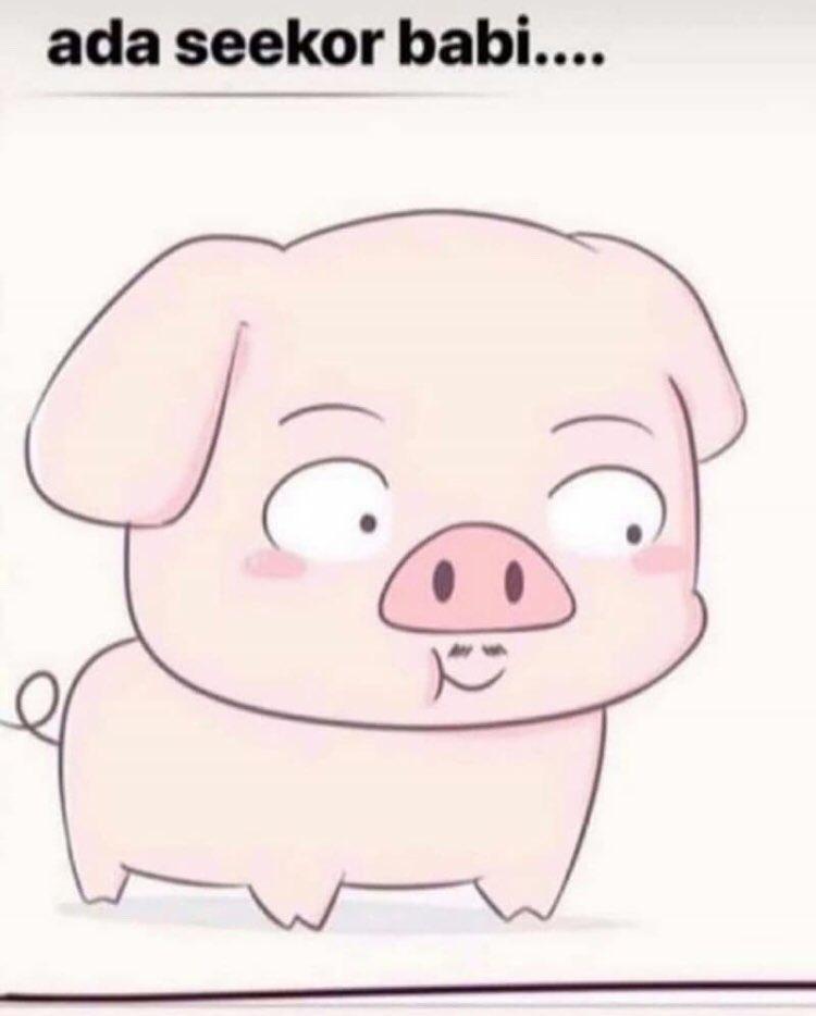 6000 Gambar Babi Bekicot  Terbaik