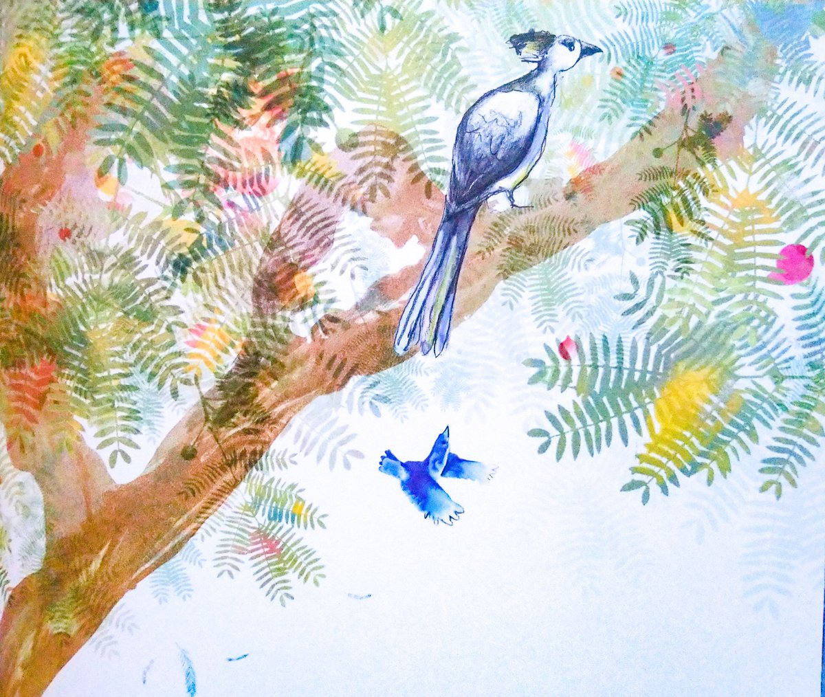 #BookIllustrationOfTheDay is by @catherinerayner for The Go Away Bird by Julia Donaldson (2019). I nabbed a signed copy in Edinburgh after falling in love with the birds in this book, from the filigree, feathery Flip Flap bird to the painterly & over powering Get You bird!