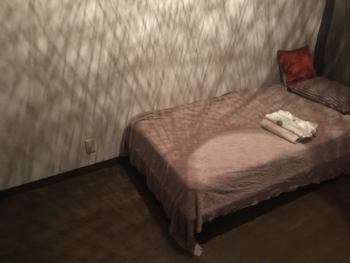 今日の「宿泊をともなう依頼」、余ってる1室を丸ごと使わしてもらってる。「無料の、むしろ給料の出るエアビーだと思って使ってください」と言われた。
