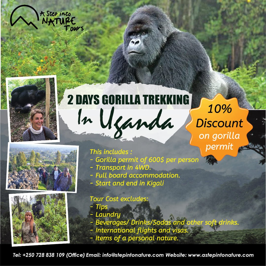 10% DISCOUNT ON A GORILLA PERMIT(The discount is valid for trekkers on 4th Sept 2019) Make your #summer summer magical! Email us at info@astepintonature.com /contact:+250728838109 for an #overwhelming #experience #visituganda #visitrwanda #gorillatrekking #lifetimeexperience