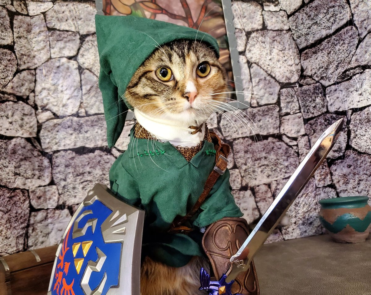 """""""Oh and don't forget... Fate of Hyrule? That rests on your shoulders. Don't let everyone down!""""  #LegendofZelda<br>http://pic.twitter.com/0sXmNsW7cB"""