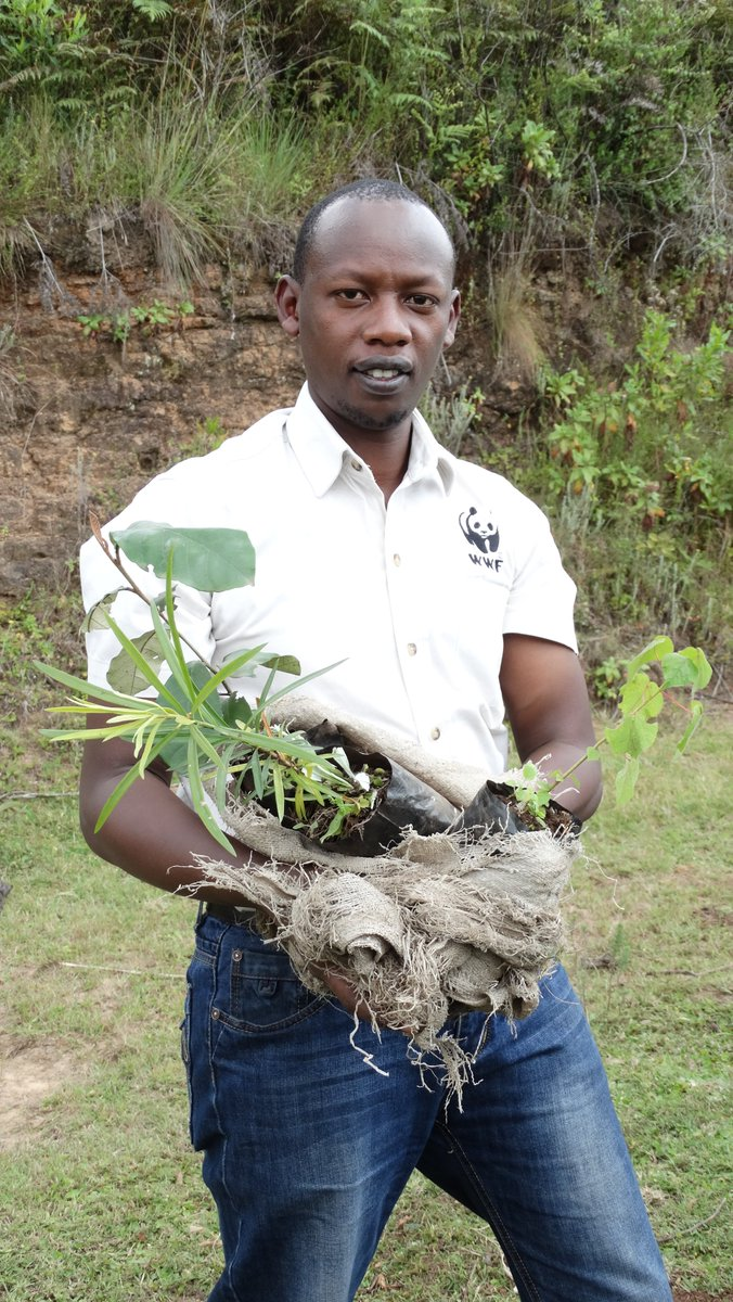#StaffAppreciationTuesday to Nixon Chirchir, he is passionate about working with local communities on #conservation. A part from being a project accountant at #WWFKenya, he plants trees in his home county #ElgeyoMarakwet. Lets all be Like Nixon and #KeepKenyaBreathing.