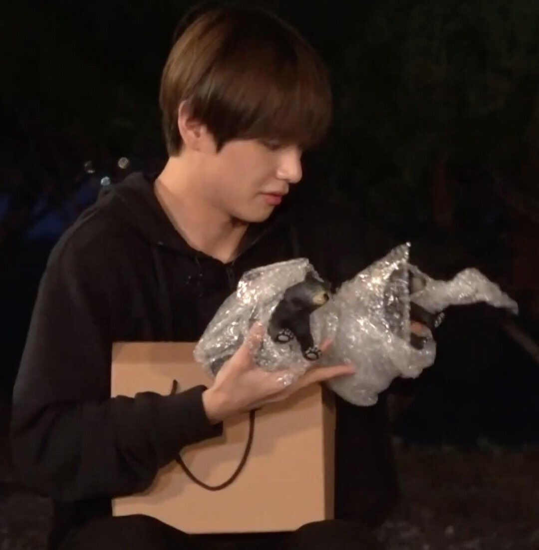 Jimin gave Taehyung the bears as a gift on the new run bts, I'm freakin crying know <br>http://pic.twitter.com/nILVQzcSvG