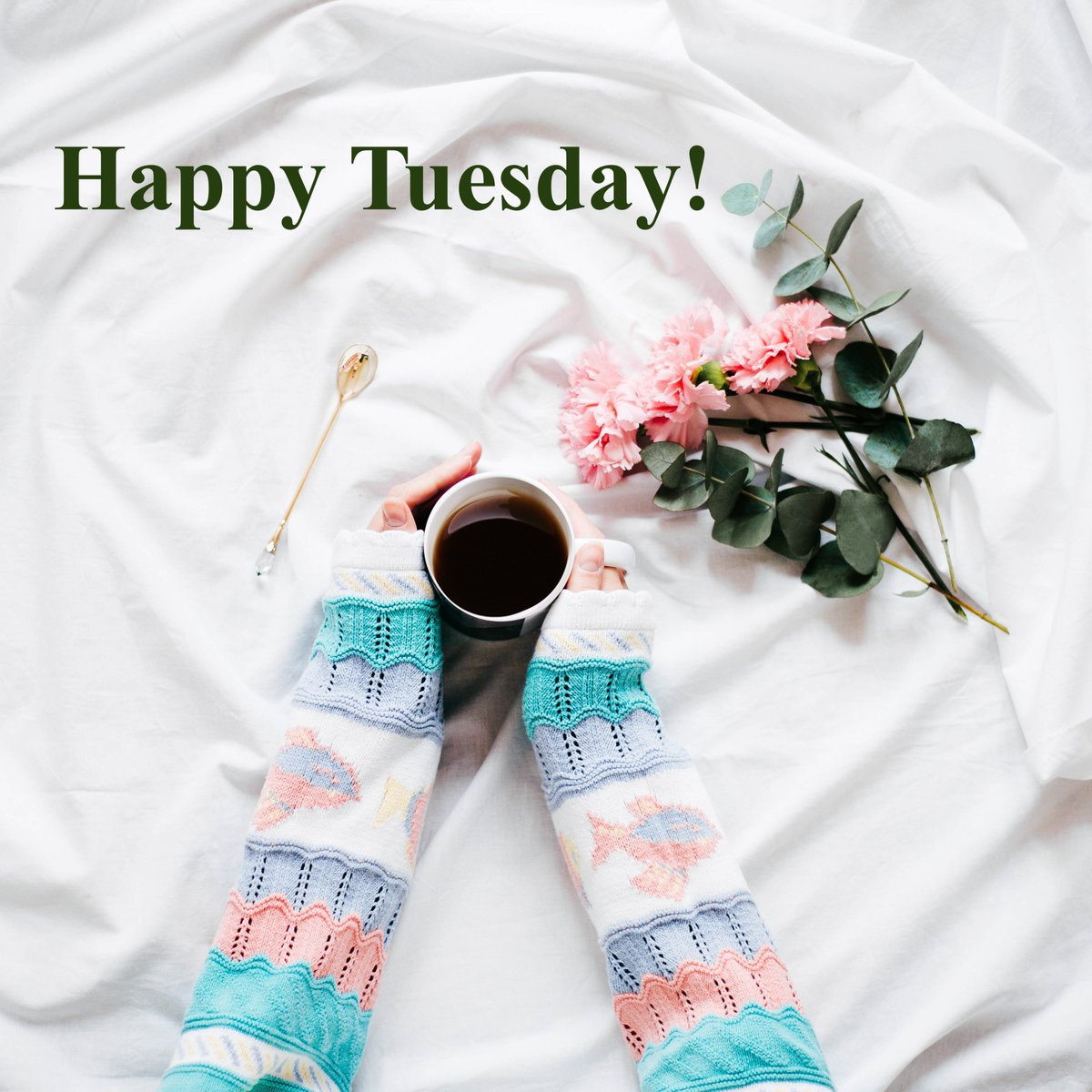 Happy Tuesday! Its going to be a terrific one for all of us. #TuesdayThoughts #TuesdayMotivation #TuesdayMorning #IAM #JoyTRAIN #goodmorning #coffeelovers #morningjoe #InnerPeace