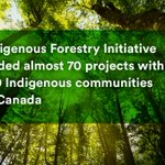Image for the Tweet beginning: Canada's forest sector is diversifying