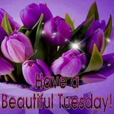 @maryrevie Happy Tuesday, Nancy! Many blessings filled with happiness. 💛💛💛