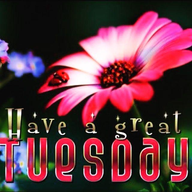 @brain_lupus @jmkuhn99 @k9_retired @AnewmeHealthy @JWPowerYourLife @LEAD_Coalition @drjameszender @AChVoice @BNightsCRPS @ArtMarKAS @kerrywekelo @Dilliotto @brainenergyteam @dalilabellome @DrNikolova_Rumi @dj_mac_nificent Thank you for spreading love! Happy Tuesday, Diane!