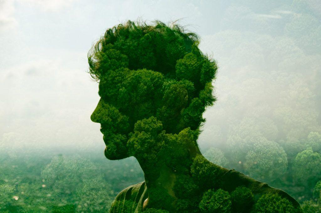 Картинки человек и природа