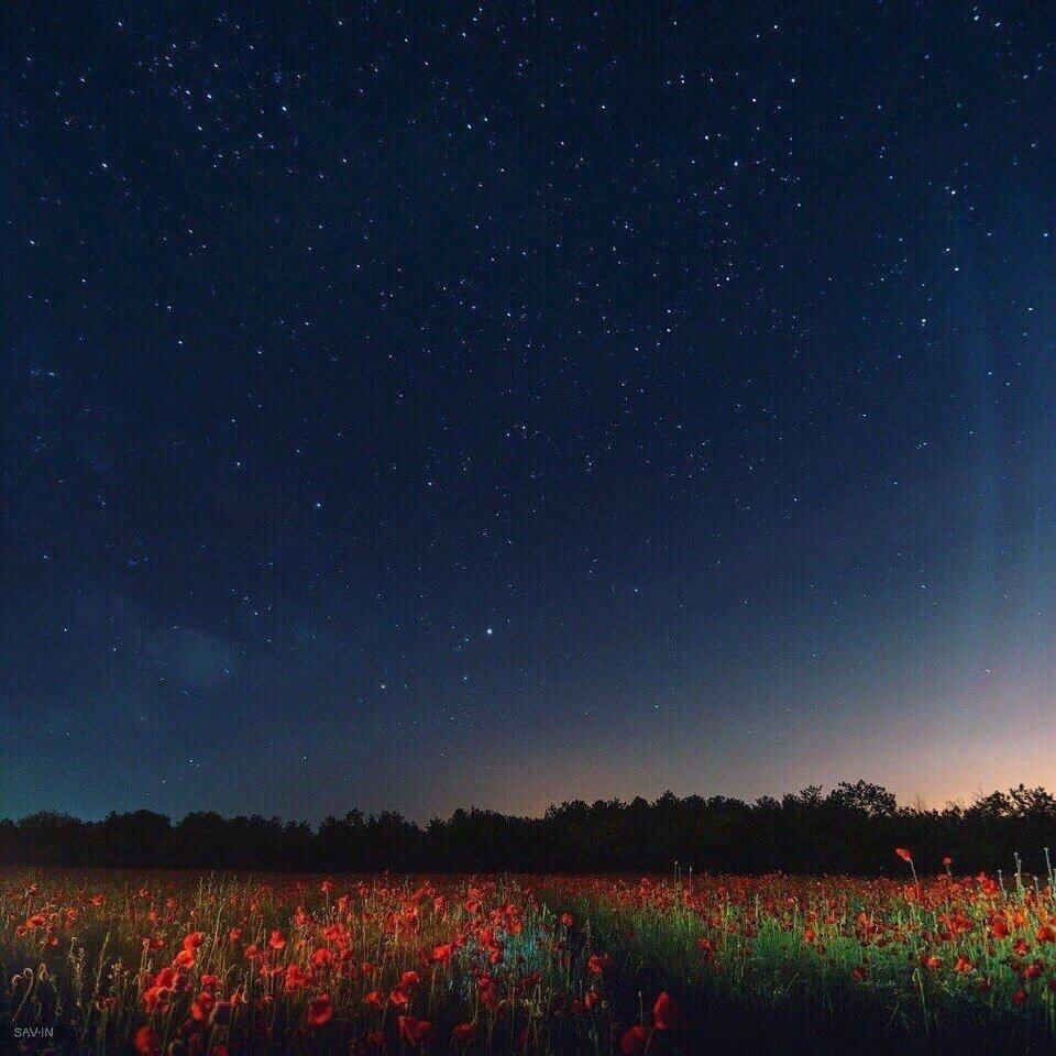 минуй картинки ночью в поле звезд благодать готовой приставке