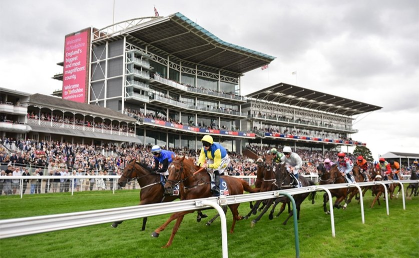 The 2019 Ebor Festival gets underway tomorrow - luckily @mulldog was around to preview the meeting. 🏇 Horse racing tips: bit.ly/2019ebor
