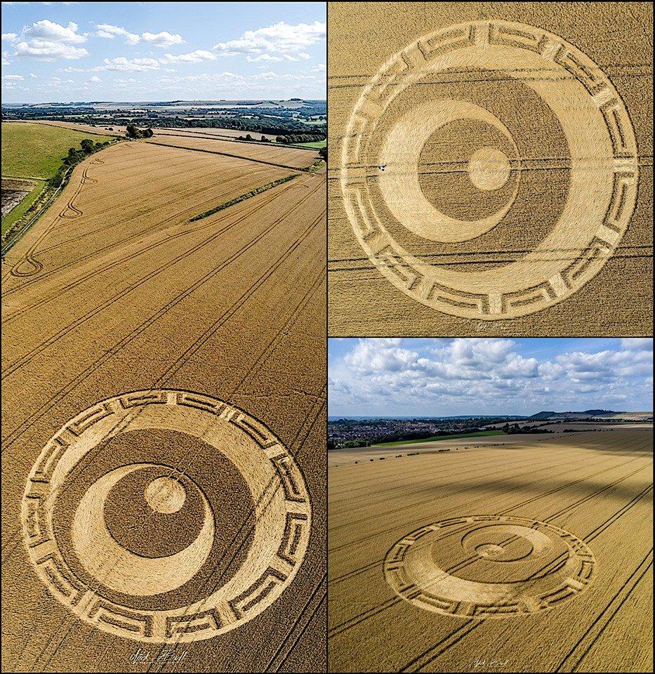 Crop Circles 2019 - Etchilhampton Hill, Devizes ECcV5zAUIAIi7tv?format=jpg&name=medium