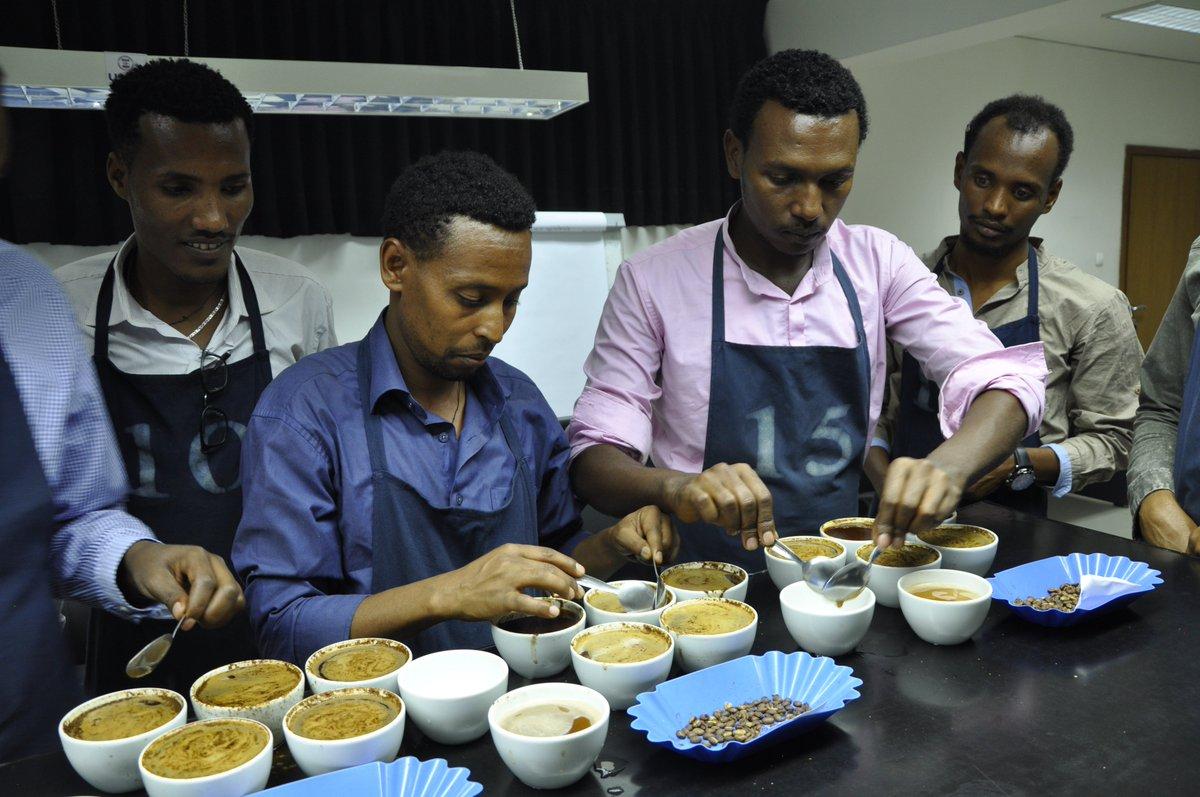 Good Morning #Ethiopia  #Africa  #World  #Coffee    Breaking@ECX  Central Laboratory