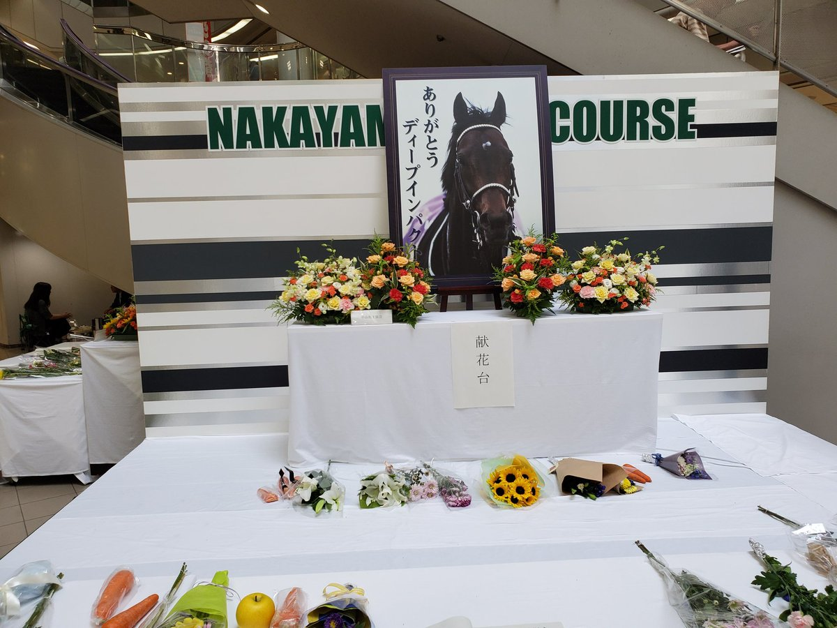 中山競馬場のディープインパクト展示コーナー 献花台もありました。
