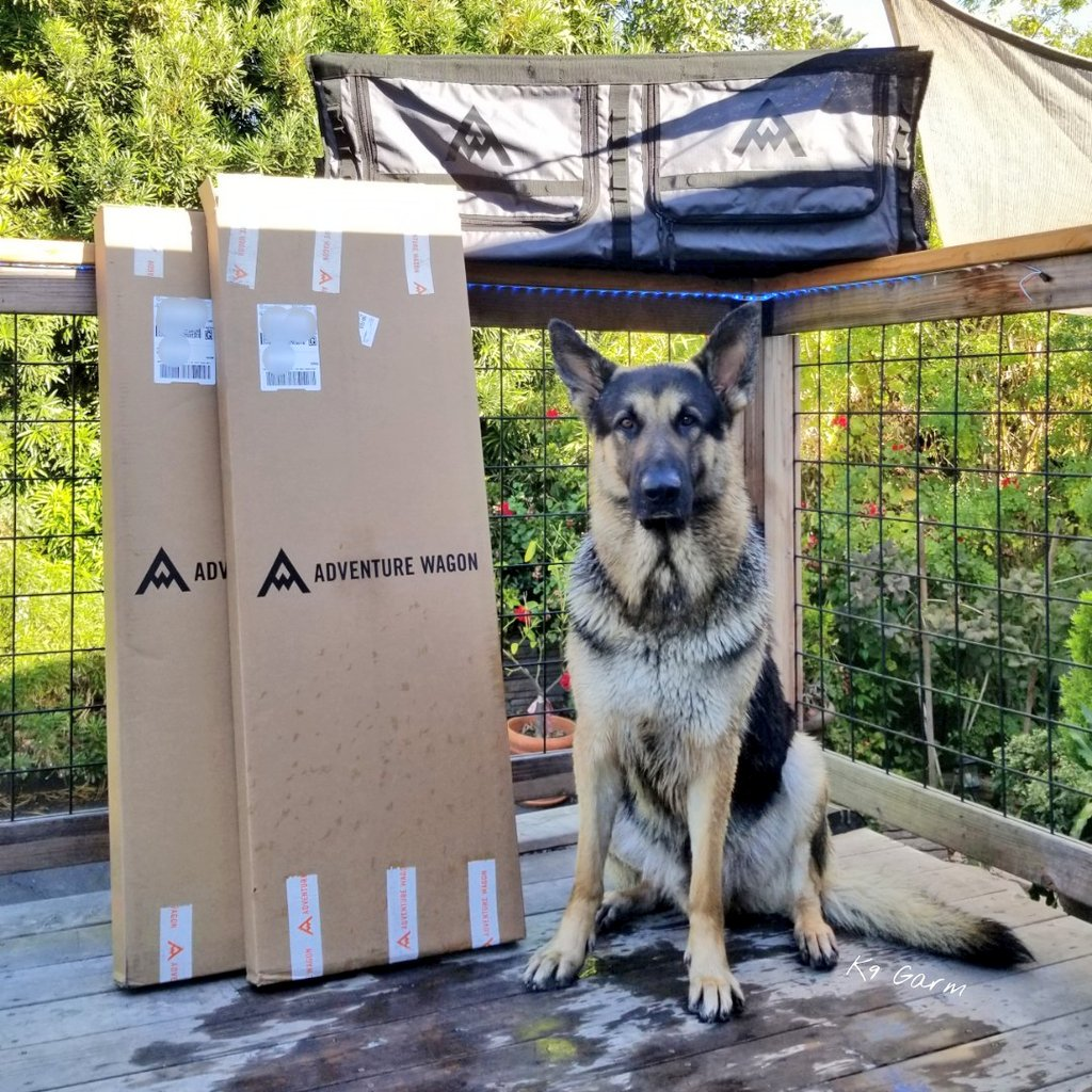 #moosedog got a bath and i got the Mule Bags for the #MooseMobile from #AdventureWagon. These are gonna look great mounted up in the van. He already got em dirty!  Its a good day  #vanlife #van #conversionvan #RAM #RAMpromaster #promaster #aluminess #K9Garm #SARK9 #FaMoose<br>http://pic.twitter.com/PONNUZCNVG