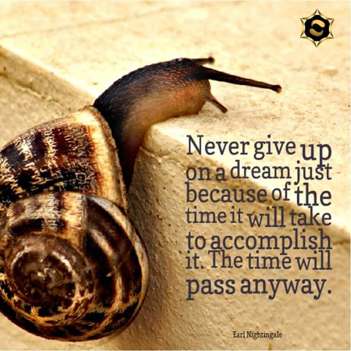 """""""Never give up on a dream.""""  Earl Nightingale  #LOA #lawofattraction <br>http://pic.twitter.com/E3gvewmxDq"""
