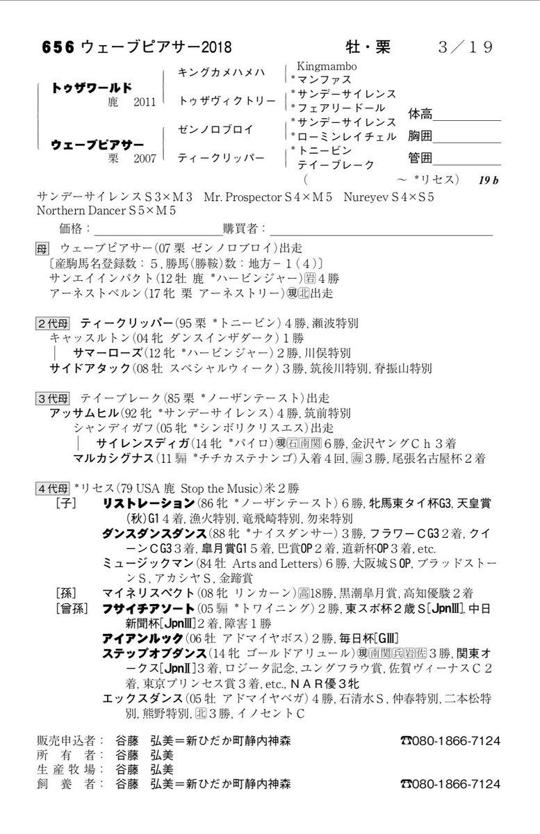 サマーセール3日目 ケイアイファームがトゥザワールド牡馬を480万円(税抜)でお買い上げ‼️