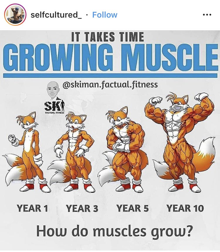 The lines are becoming so blurred between fitness instagram and furry instagram, they're fusing <br>http://pic.twitter.com/Hl9RalI0ao
