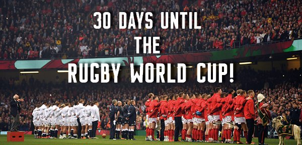 And we can't wait!🎉🎉🎉 #RWC2019 https://t.co/MSnxRhGdeP