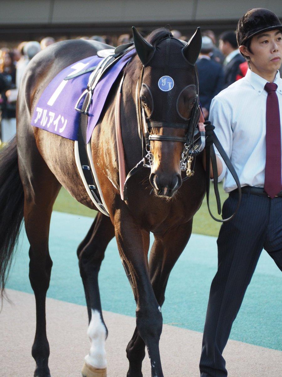 アルアインはぶっつけで天皇賞(秋)へ!やはり2000mなら大崩はなさそう。大阪杯みたいな競馬が出来れば面白そう。更なるタイトル奪取へ! #アルアイン #天皇賞(秋)