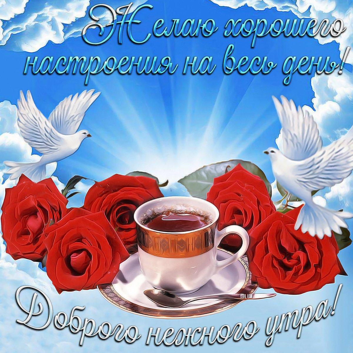 Воспитателя днем, открытки пожеланиями доброго утра с голубями