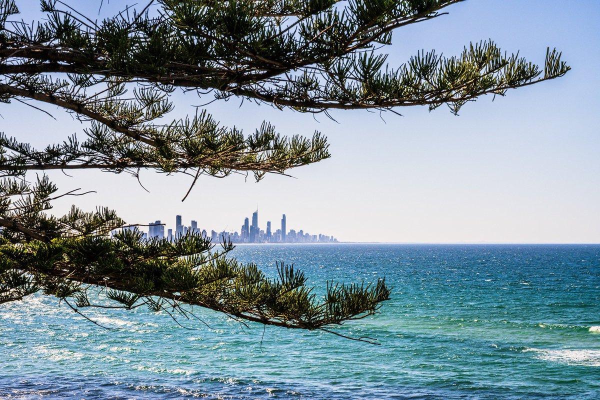 Framing the Gold Coast skyline!  #GoldCoast #SurferParadise #Queensland #Australia #ontheroadnikon #travel @Queensland @Australia @GoldCoastBureau @NatGeoTravelpic.twitter.com/MVqLOsPyaJ – at Gold Coast Australia