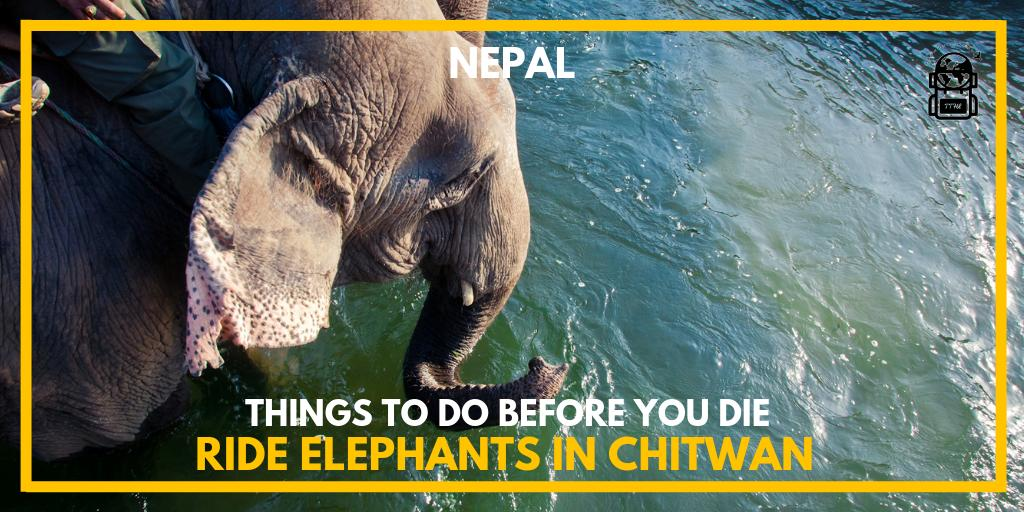 Would you do it? Y/N@thetravelhackinglife 👆 for more Journeys to Take before you die.⠀Find out more info @ https://thetravelhackinglife.com/ride-elephants-in-chitwan-nepal/…#nepal #chitwan #chitwannepal #chitwannationalpark #nepal🇳🇵#nepalese #nepaltravel #nepalnow #explorenepal #nepalisbeautiful #visitnepal