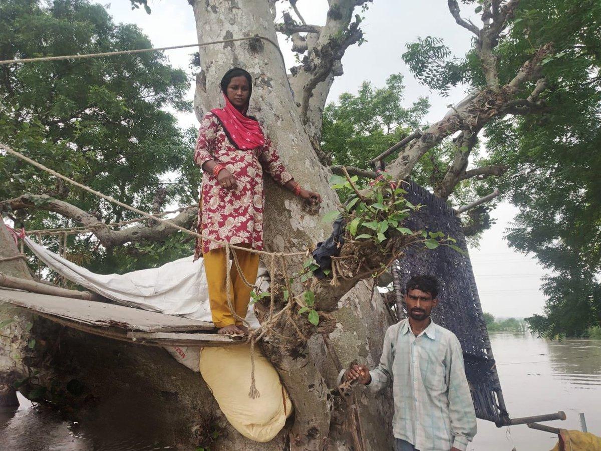 तस्वीर में गर्भवती महिला अपने पति के साथ, कल रात बाढ़ के पानी ने इन्हें पेड़ पर चढ़ने को मजबूर कर दिया, 2 छोटे बच्चों के साथ रात पेड़ पर ही गुजरी।आज सुबह रेस्क्यू टीम ने पूरे परिवार को सुरक्षित स्थान पर पहुंचाया।