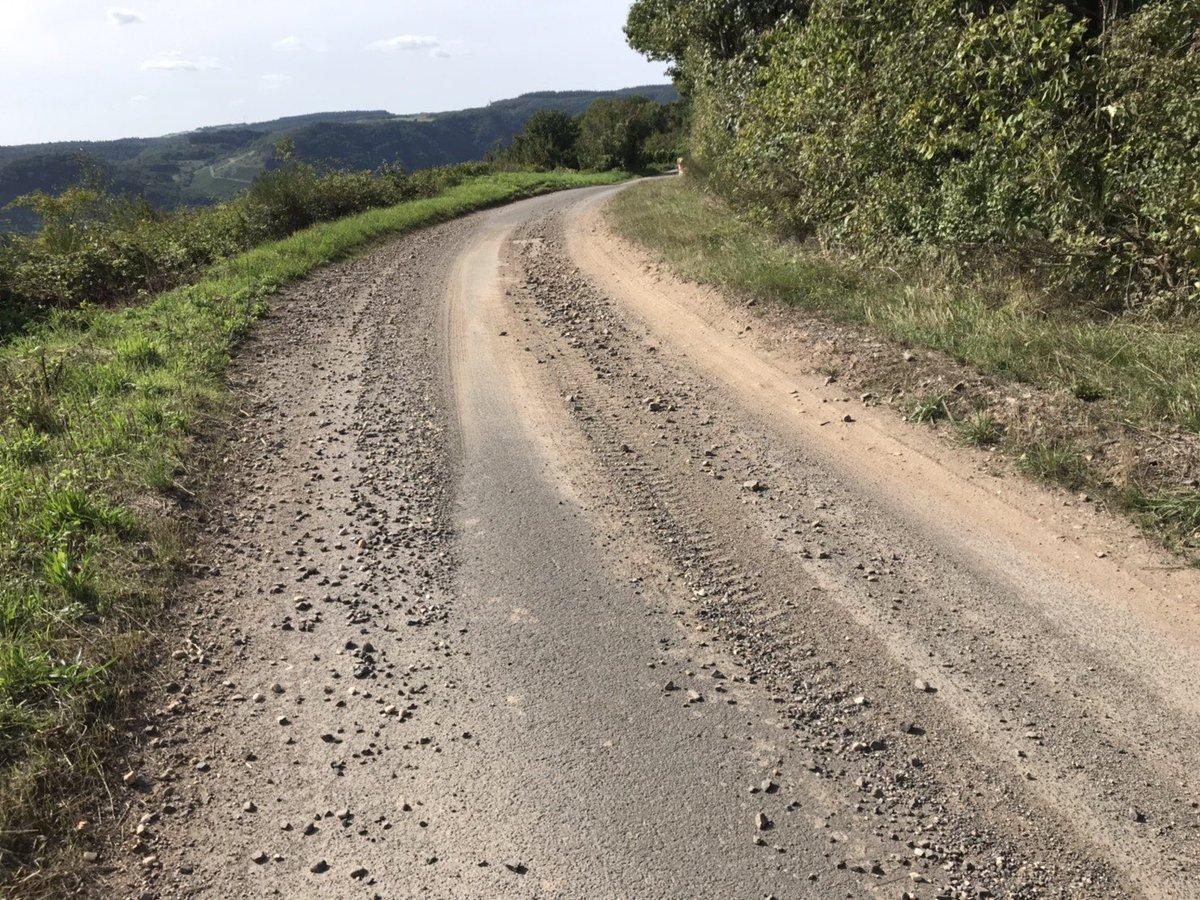 WRC: ADAC Rallye Deutschland [22-25 Agosto] - Página 2 ECgH2cIU0AE3H5z