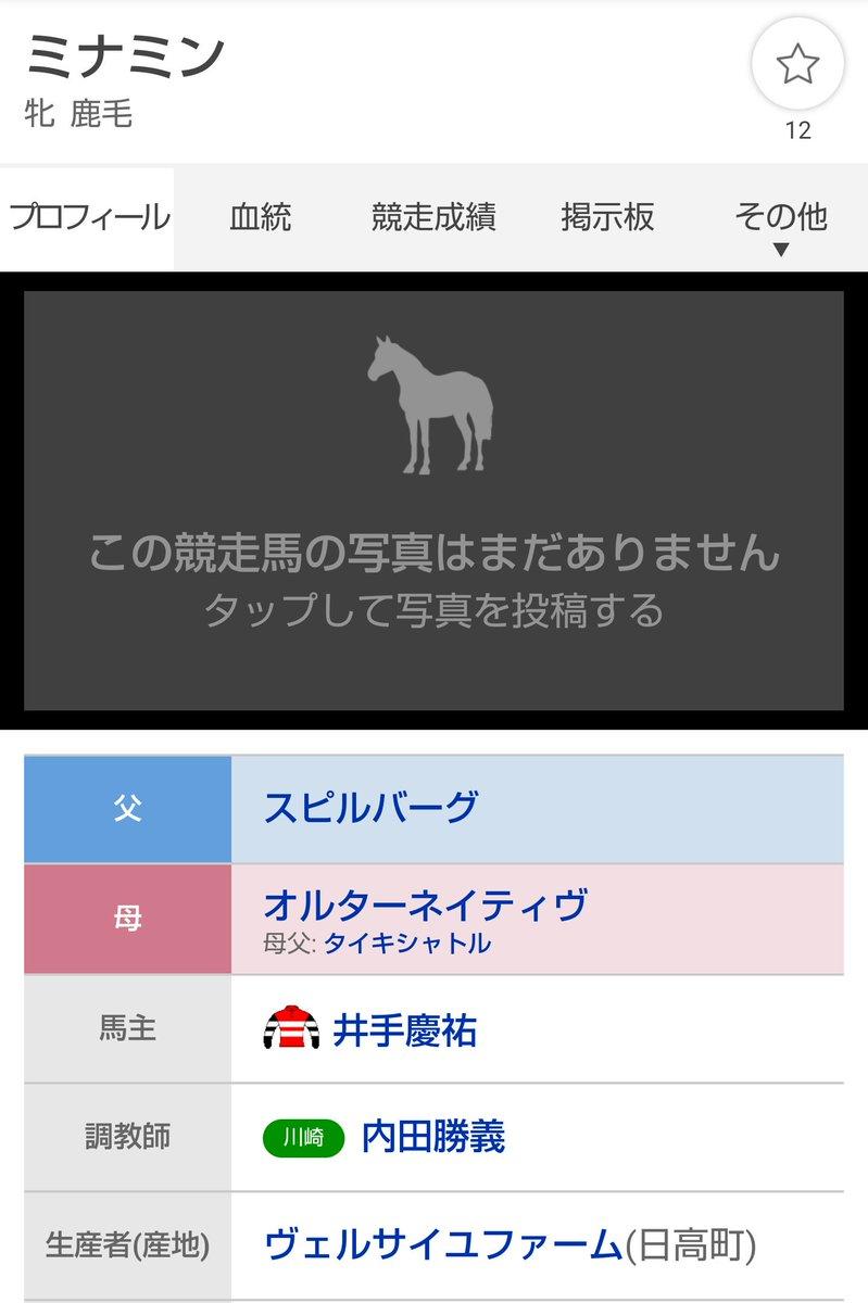 みなみんこと梅澤美波さん、川崎の新馬戦を勝っていた🏇 #乃木坂競馬部 #ミナミン
