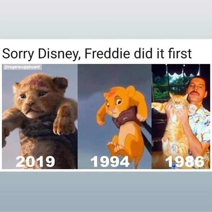 Sorry @Disney - But this is truely right  #TheLionKing  <br>http://pic.twitter.com/3DKS1Y2BlQ