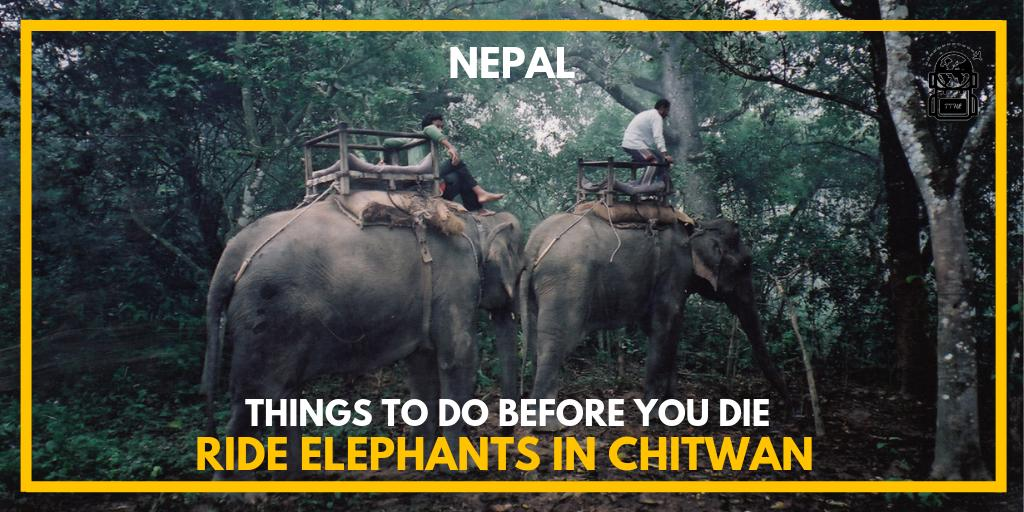 #Nepal's lesser-known south melts away the icy Himalayas into marvelous landscapes and exciting activities, Find out more at https://thetravelhackinglife.com/ride-elephants-in-chitwan-nepal/…#chitwan #chitwannepal #chitwannationalpark #nepal🇳🇵#nepalese #nepaltravel #nepalnow #explorenepal #nepalisbeautiful