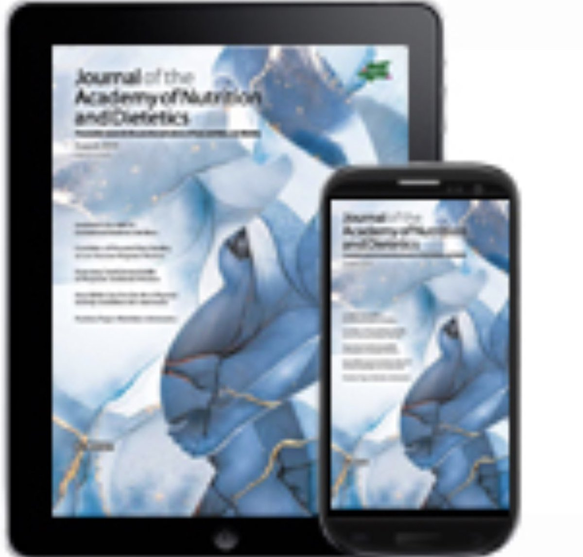 ebook Options for Transitional Security Capabilities for