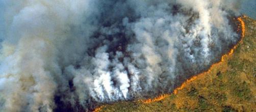 アマゾン 火事