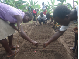 test Twitter Media - ❓ What do you think these people planting in Uganda ❓Find out by reading Genesis', BMS agriculturalist, latest prayer letter: https://t.co/3nyahvL9W5 https://t.co/4RCgZS7GX9