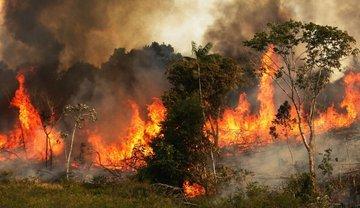 Incendio en el Amazonas ECgmsKXU0AA7-v7?format=jpg&name=small