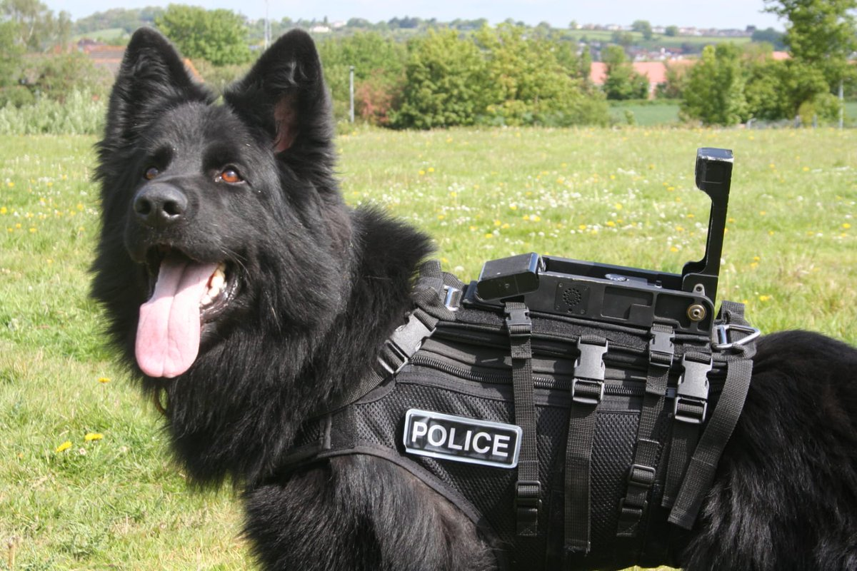 Just because! Pd Boris looking handsome! <br>http://pic.twitter.com/OaN0eaEXQg