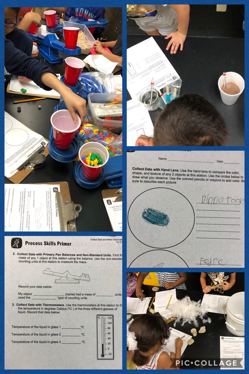 Practicing scientific observation skills in @BearCreekElem 2nd. Engaging, hands-on learning the first week of school! Way to #bebold! #WeAreGCISD #teambce