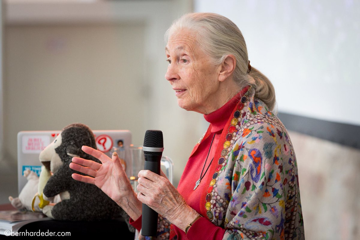 #wednesdaywisdom Jane's most inspiring quotes from 2018:  https:// news.janegoodall.org/2018/12/20/674 9/   … <br>http://pic.twitter.com/twmiMyIjH3