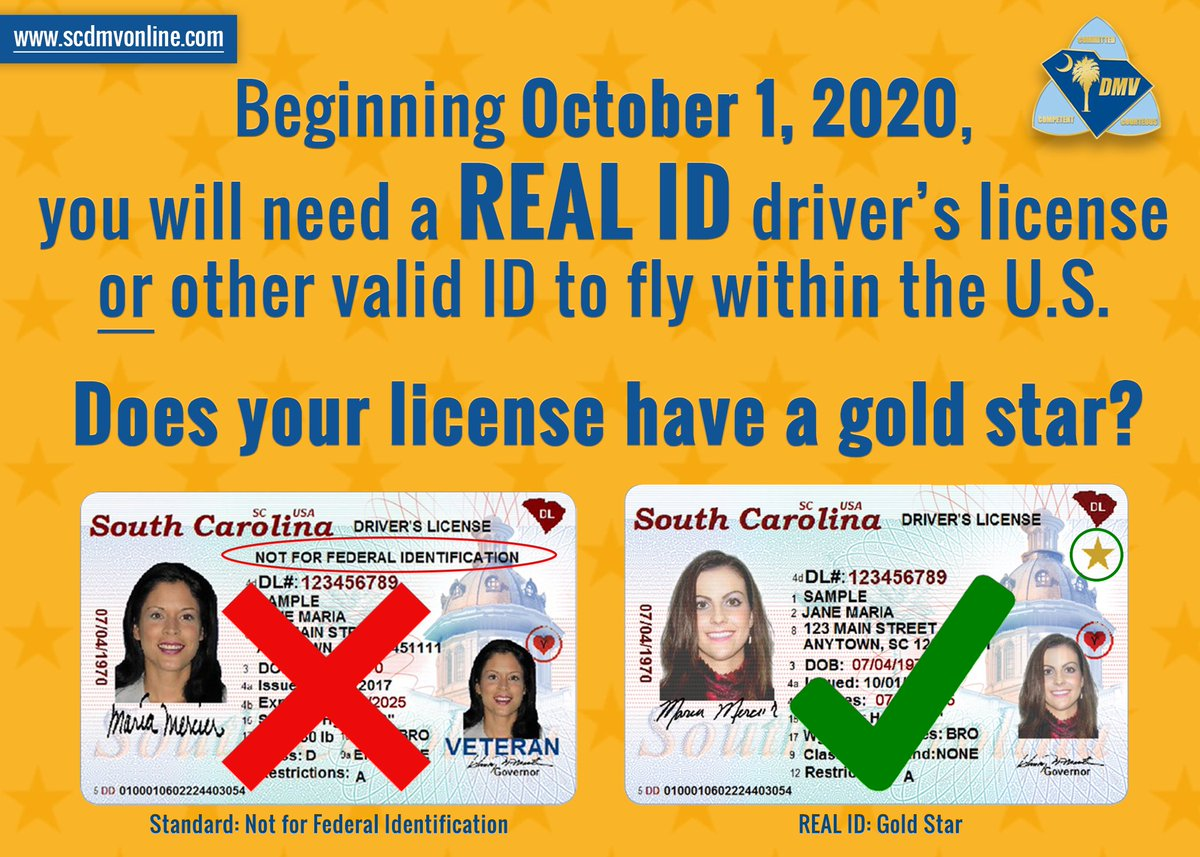 sc dmv drivers license lookup