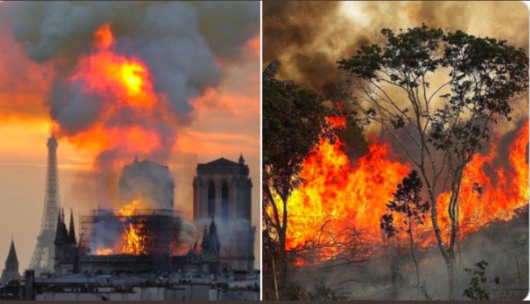 Notre Dame Fire  • In news within minutes  • 3 Billion Donated  • Worldwide coverage   Amazon fire (literal lungs of our planet)  • No news coverage for 3 weeks  • 0 Donated   #PrayforAmazonas<br>http://pic.twitter.com/Af9loZHCbu