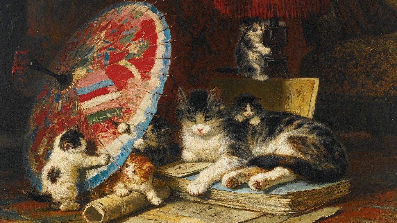Назови известные тебе породы кошек найди их изображения открытки фото репродукции, рождество христово открытки