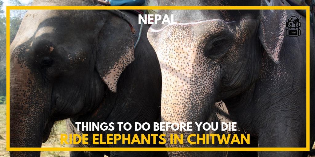 Would you do it? Y/NFor More Ideas of amazing journeys to take visit https://www.thetravelhackinglife.com#nepal #chitwan #chitwannepal #chitwannationalpark #nepal🇳🇵#nepalese #nepaltravel #nepalnow #explorenepal #nepalisbeautiful #nepaltourism #visitnepal #discovernepal #nepalgram