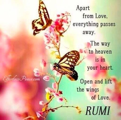 Apart from love, everything passes away.  The way to #heaven is in your #heart  Open and lift the wings of love. #Rumi #LightUpTheLove #Love #JesseLewisChooseLoveMovement  #ChooseLove #FamilyTRAIN #StarFishClub #IAMChoosingLove #JoyTRAIN #GoldenHearts<br>http://pic.twitter.com/FYMDpB50Xt