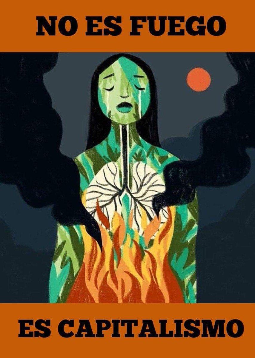 16 días ininterrumpidos de incendios INTENCIONALES en la #Amazonia. Obra de los latifundistas para expulsar a los pueblos originarios, deforestar y sembrar soja. Es el proyecto del régimen de Bolsonaro. Otro crimen de lesa humanidad.@pvillegas_tlSUR @SputnikMundo @pca_prensa