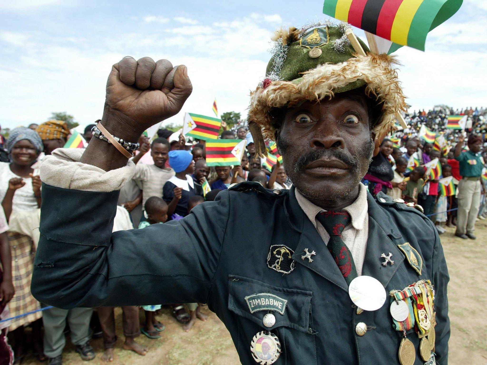 сорок африканские приколы фото что обратить внимание