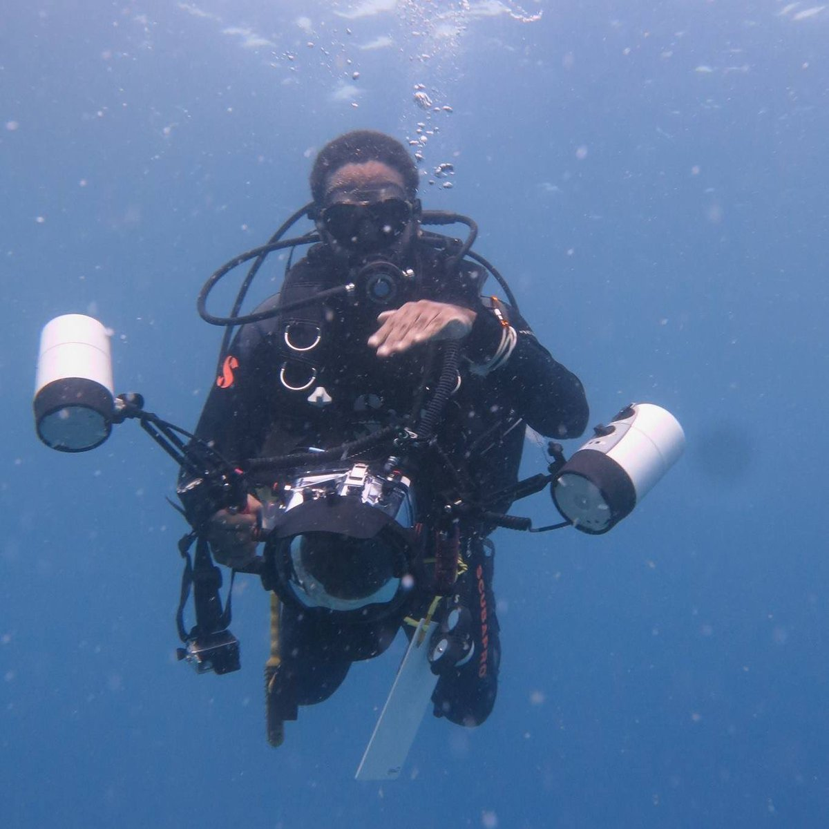 I've dreamed of the Sea again... I really miss diving!