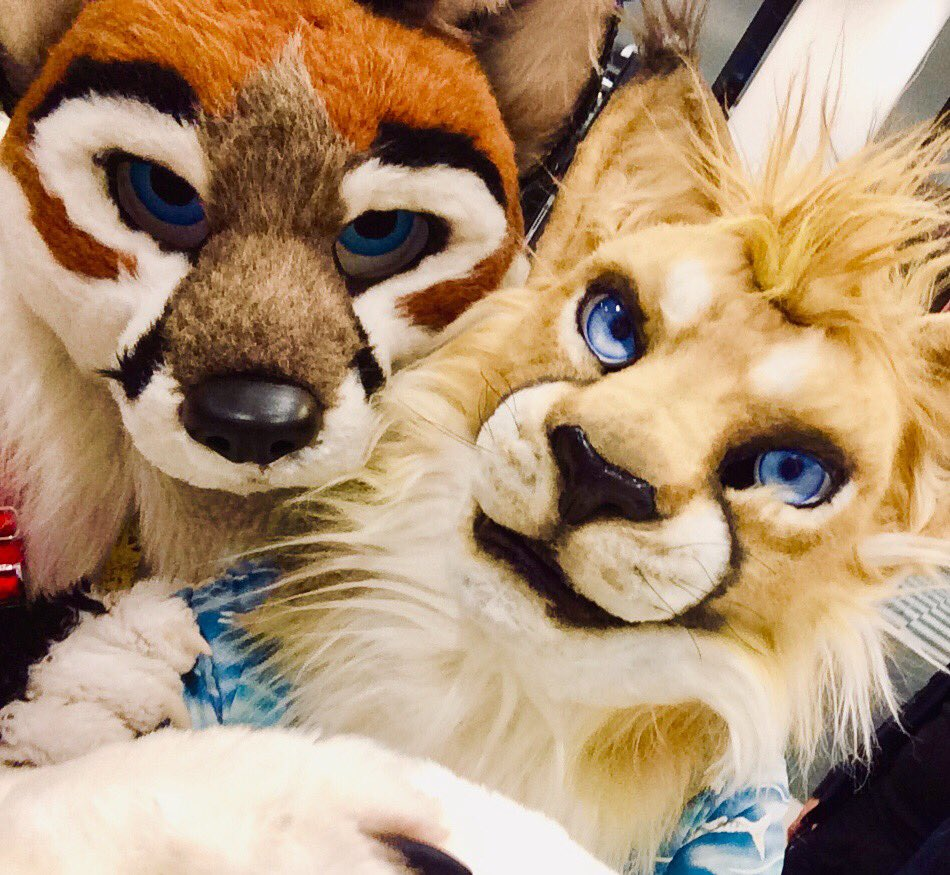 #Eurofurence is just amazing! Meet so many new and old friends, and it reminds me the first time I attended AC. I never thought I would get the same feeling again but EF did! Thank you @eurofurence I definitely will come back again! #EF25 #Eurofurence25 #fursuit<br>http://pic.twitter.com/0PNFy0Nu3O