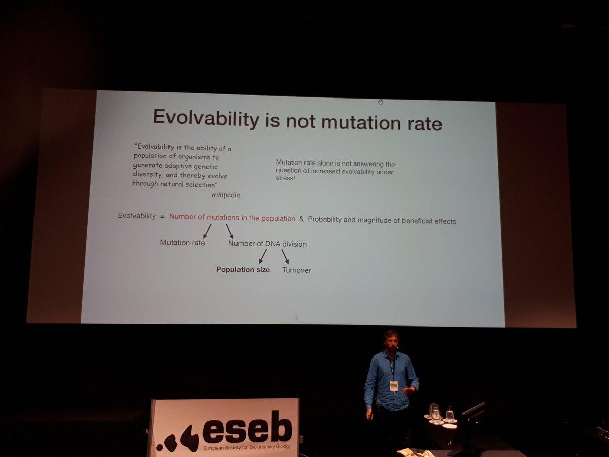 Antoine Frenoy: '#evolvability is not  #mutation rate' #eseb2019